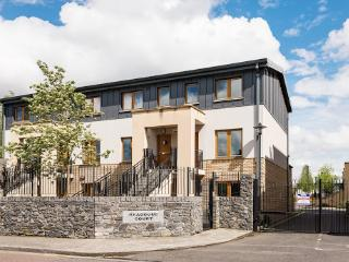 Spacious Gated Apt With Parking Close to the City - Dublin vacation rentals