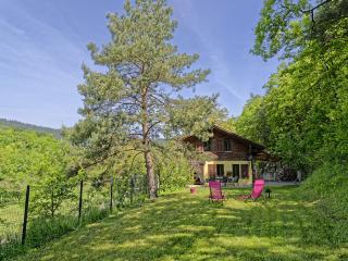 Au Beau Chalet, gîte de charme proche Colmar 4**** - Osenbach vacation rentals