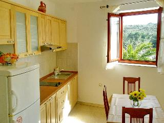 Nice Condo with Internet Access and A/C - Molat Island vacation rentals