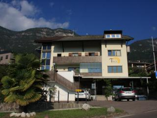 Nice Condo with Internet Access and Wireless Internet - Caldaro sulla Strada del Vino vacation rentals