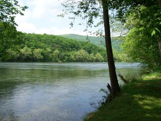 Bear Meadows cabin on the Shenandoah River - Rileyville vacation rentals