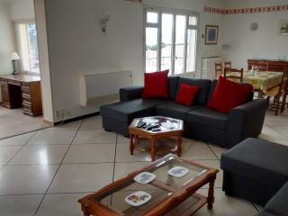 Bright large lounge balcony kitchen 2 bedrooms garden parking, 2wcs 3 washbasins - Saint Raphaël vacation rentals