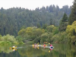 Haven on Earth! New rental! 5 min.stroll to River! Close to Golf/Wineries! - Guerneville vacation rentals