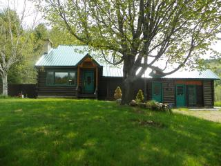 Perfect Cabin with Internet Access and A/C - Upper Jay vacation rentals
