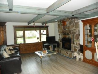 Perfect Cabin with Internet Access and Wireless Internet - Upper Jay vacation rentals
