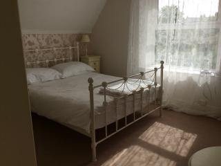 Light and airy room in our Victorian townhouse - Watchet vacation rentals