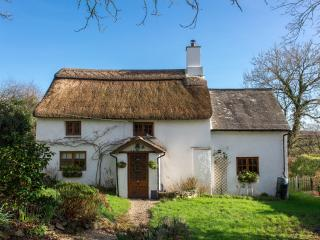 Damson Cottage, Quintessential Dartmoor Thatch - Lifton vacation rentals