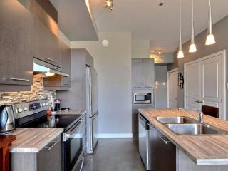 Nice Condo with Internet Access and Dishwasher - Laval vacation rentals