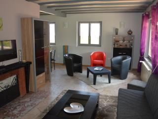 Centre Alsace situé entre Strasbourg et Comar. - Neubois vacation rentals