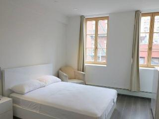 Beautiful Studio in Soho - New York City vacation rentals