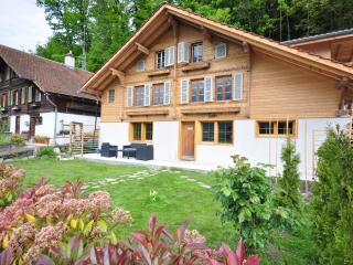 Lakeview Family Apartment.  Sleeps 12. - Ringgenberg vacation rentals