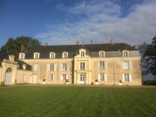 Beautiful 8 bedroom Chateau in Jallais with Internet Access - Jallais vacation rentals