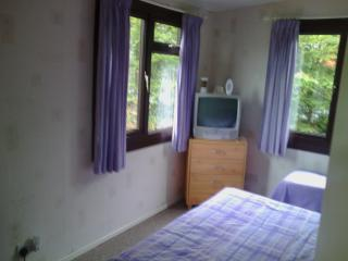 2 Bed Chalet  in North Wales 2 mile from sea golf - Borth vacation rentals