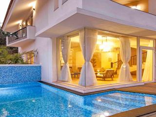 Baga Beach Private Pool Villa, 3 Bed - Tamyarine - Baga vacation rentals