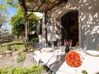 IL MOLINO - San Giuliano Terme vacation rentals