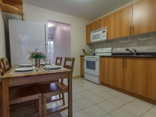 Charming 3BR Downtown Montreal - Montreal vacation rentals