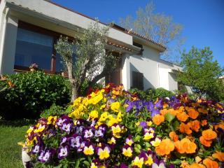villa padronale circondata da ampio giardino - Posada vacation rentals