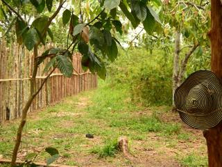 Nice 4 bedroom Tented camp in Leticia - Leticia vacation rentals