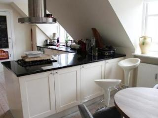 Big apartment in Frederiksberg with garden and parking - 3655 - Copenhagen vacation rentals