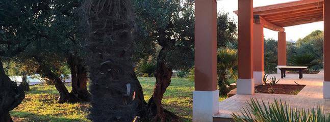 Pino Marittimo - Image 1 - Castelvetrano - rentals