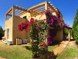SPACIOUS VILLA. SEAVIEWS, POOL,CLIMATE,WIFI,BBQ(A) - Calas de Majorca vacation rentals
