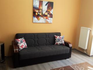 Résidence MuKen (apart 2) - Anderlecht vacation rentals
