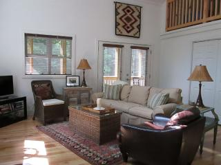 Modern Cozy Cabin Hot Springs Area - Hot Springs vacation rentals