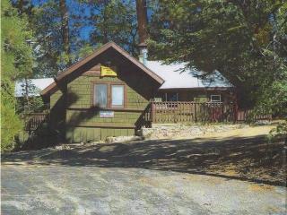 Nice 2 bedroom House in City of Big Bear Lake - City of Big Bear Lake vacation rentals