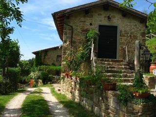 """""""Il coccodrillo"""" relax in collina - Vicchio vacation rentals"""