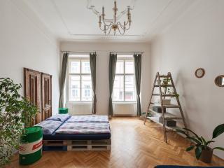 City centre, original, comfortable - Prague vacation rentals