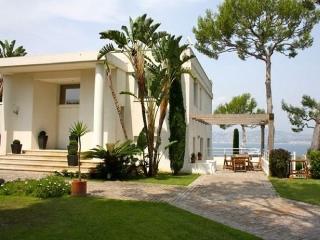 Antibes Holiday Villa BL*********** - Antibes vacation rentals