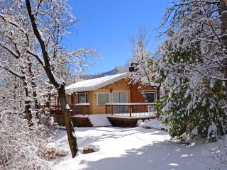 Romantic cabin in woodsy area, 2 miles from skiing - Big Bear City vacation rentals