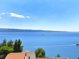 6099 A2 Vila Jadrana(2+2) - Suhi Potok - Krilo Jesenice vacation rentals