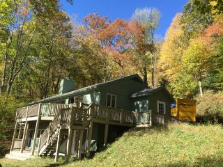 Mountain Top Cabin Just North of Asheville - Mars Hill vacation rentals