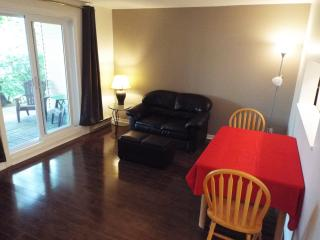 Centrally located, WIFI, cable, pool, gym - Ottawa vacation rentals
