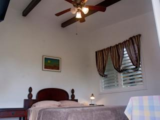 Seekers' Hive Orchid Mahina Suite - Keaau vacation rentals