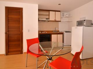 GABRIELA - 1 Bed Renovated Studio with lots of light (Zona G) - Bogota vacation rentals