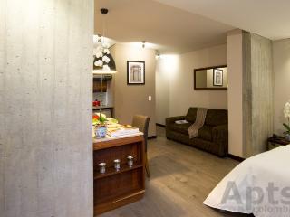 GEA B - 1 Bed Designer Studio Apartment with modern design - Chapinero Alto - Bogota vacation rentals