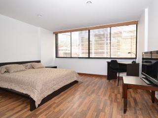 GINA - 1 Bed Renovated Studio (Av Chile) - Bogota vacation rentals