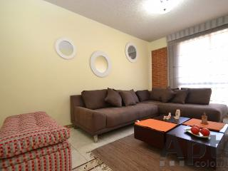 JOLE - 2 Bed Economical Apartment with mountain views - Chapinero Central - Bogota vacation rentals