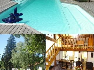 Lovely Villa with Internet Access and Shared Outdoor Pool - Saissac vacation rentals