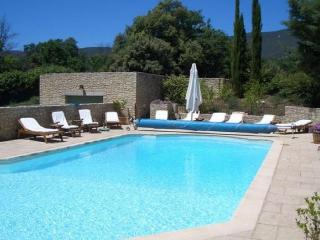 Lovely Villa with Internet Access and Private Outdoor Pool - Aix-en-Provence vacation rentals