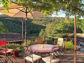 Beautiful Villa with Balcony and Private Outdoor Pool in Faugeres - Faugeres vacation rentals