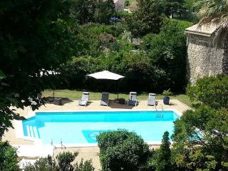 Lovely Villa with Internet Access and Balcony - Pougnadoresse vacation rentals