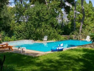 Nice Villa with Internet Access and Balcony - Saint-Jean-Cap-Ferrat vacation rentals