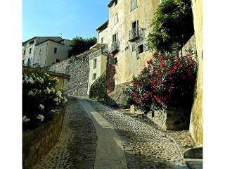 Beautiful Roquebrun House rental with Balcony - Roquebrun vacation rentals