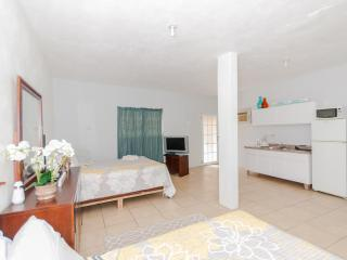 Sol del Atlantico 102, 1 Bedroom Studio Apartment - Arecibo vacation rentals