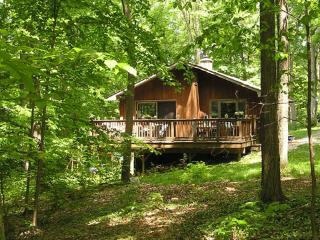 Whitman Woods:  Private Berkshire Vacation, 4 acre - Hancock vacation rentals