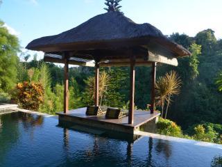 Riverside Villa, fantastic jungle view - Denpasar vacation rentals