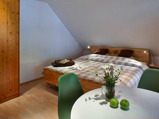 Lovely 1 bedroom Ljubljana Bed and Breakfast with Internet Access - Ljubljana vacation rentals
